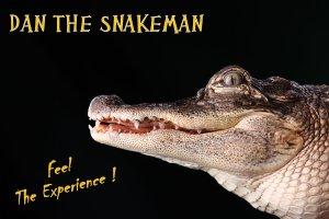 PSA Dan Croc